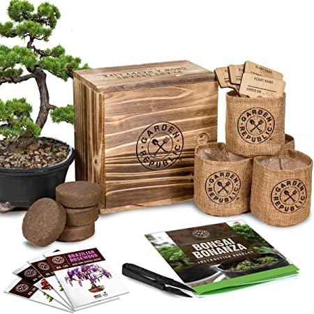 Ideas regalos naturales, semillas y set de cultivo